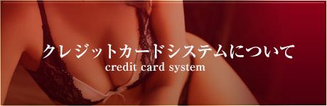クレジットカードシステムについて